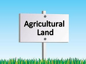 Approx  17 Acres Of Agricultural Lands, Clay Road
