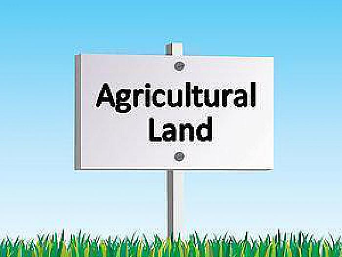 Agricultural Lands Opposite 60 Carsonstown Road, Saintfield