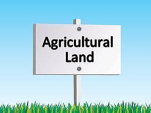 5.25 By Private Treaty, 5.25 Acres Quality Agricultural Land